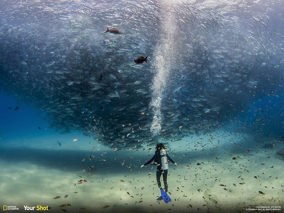 National-Geographic-3